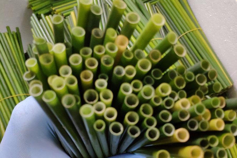 ống hút cỏ